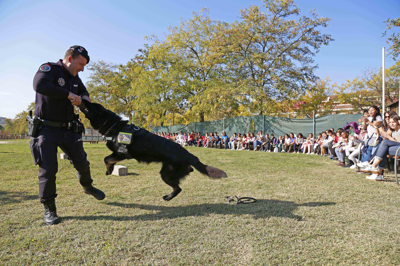 Agentes caninos de la Policía Local enseñan sus habilidades a alumnos de primaria de Móstoles